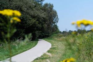 fietsen-bloemen