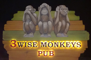 3-wise-monkeys-ommen-ibr-no