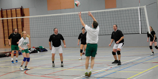 Steenuil Volleybal fanatiek en bijzonder!