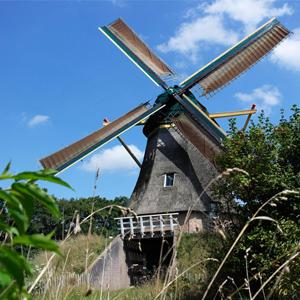 Aandacht voor cultuurgoed op Molendag in Ommen: zaterdag 6 augustus