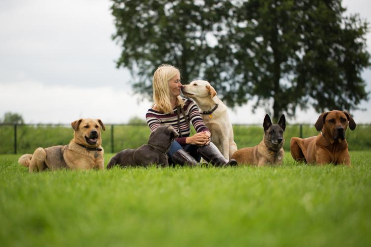 Hoe communiceren honden met elkaar? Lezing op 15 april bij recreatiecentrum Besthmenerberg te Ommen!
