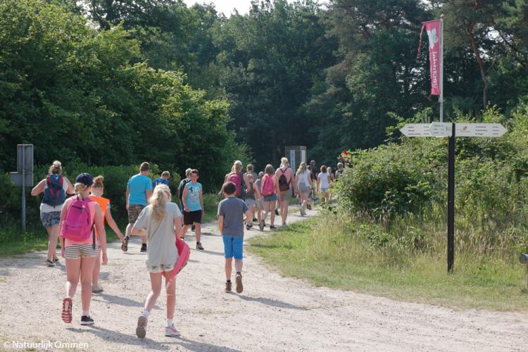 Leerlingen van Obs De Klimtoren doen een natuurwandeling en molenexcursie in Ommen